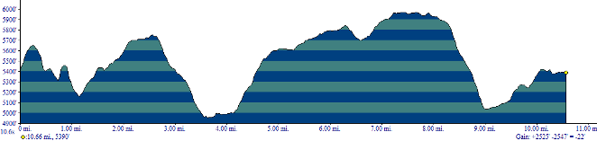 Total elevation loss and gain is 1528 feet