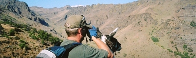 Llama packing on Wildhorse Rim, Steens Mountain, Oregon
